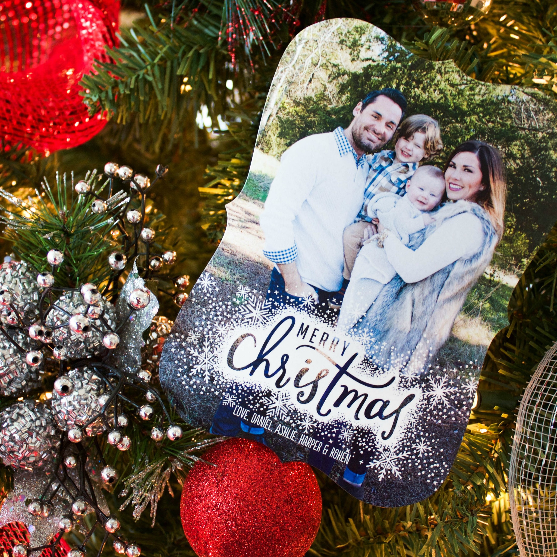 Our Family Christmas Cards with Tiny Prints