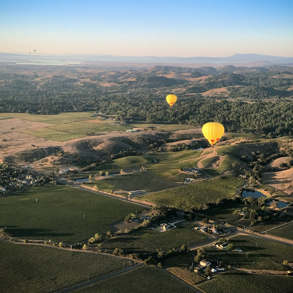 Tips for Visiting Napa Valley |Southern Made Blog